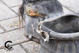 medicatie kopen cushing paard